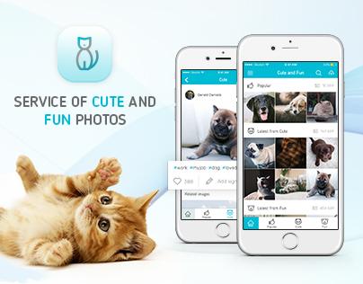 Application design - Cute&Fun