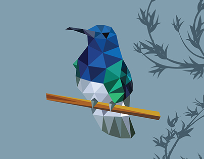 Low Poly Bird Series