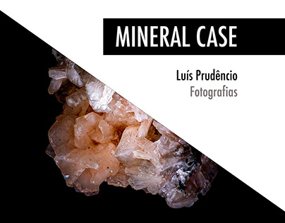 Mineral Case