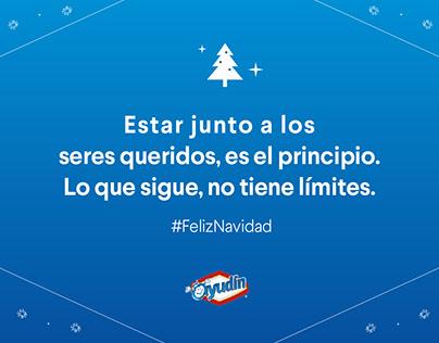 Ayudín - Clorox Argentina - Redes Sociales - FCB&FiRe