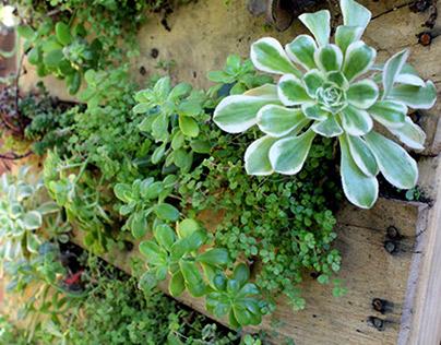 Jardines Verticales con Geobolsillos