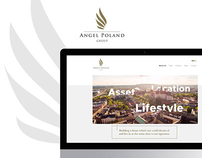 Angel Poland Group | web design concept