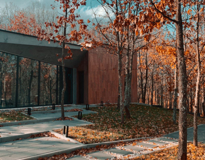 minimal forest house