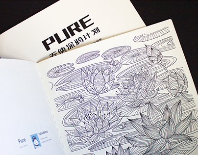 Illustration for PURE project