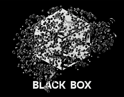 BLACK BOX - Interactive hidden layer visualization