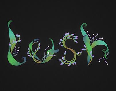 Words   animation & typography