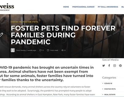 Foster Pets Find Forever Families During Pandemic