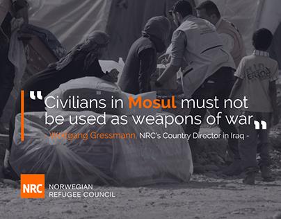 Norwegian Refugee Consul NRC