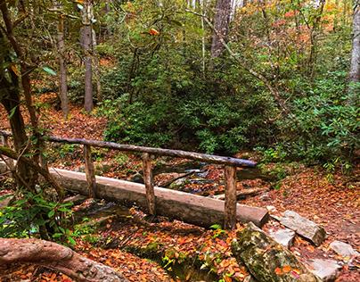 Hiking Abrams Falls