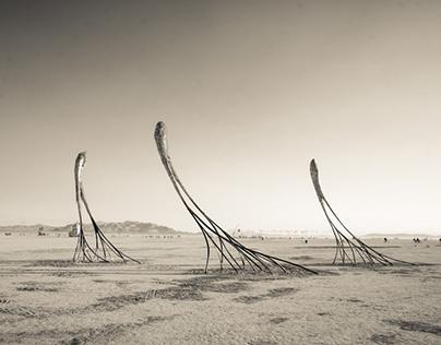 Photo Diary of Burning Man '13