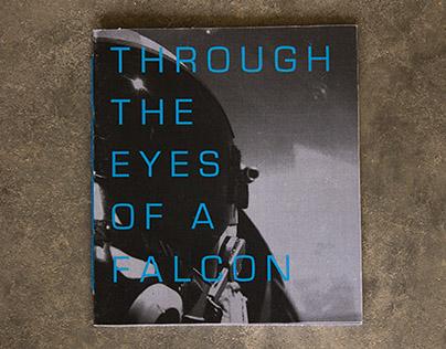 Through the Eyes of a Falcon