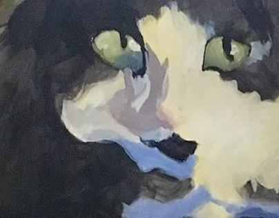 Anamorphic Pet Portraits