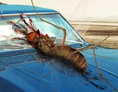 Hot Wheels | Mosquito
