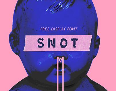 SNOT (free display font)