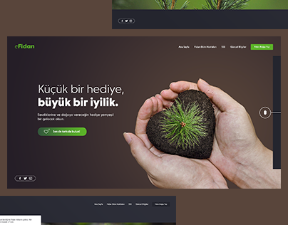 eFidan - Web Design