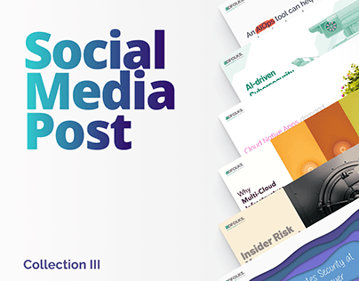 The Social Media | Collection 3