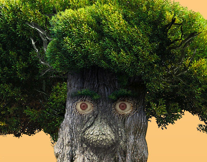 Ents website & character