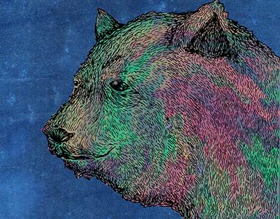 Urso da Aurora Boreal