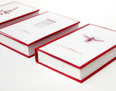 Stieg Larsson, Millenium trilogy | book design