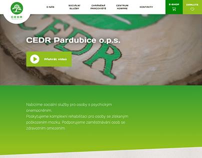 Tvorba webu - CEDR (2020)