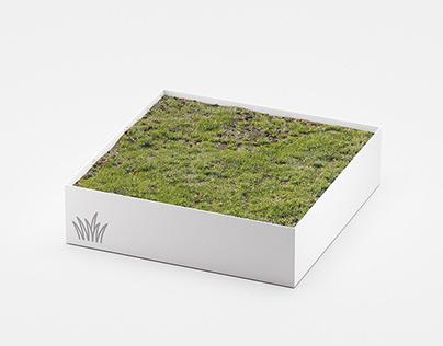 Sale: Meadow Asset for C4D