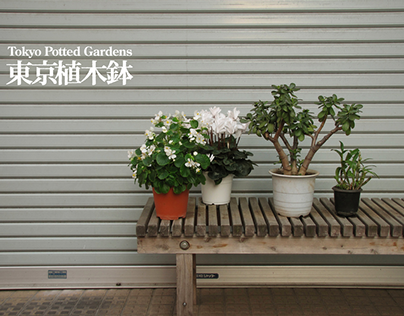 Tokyo Potted Gardens