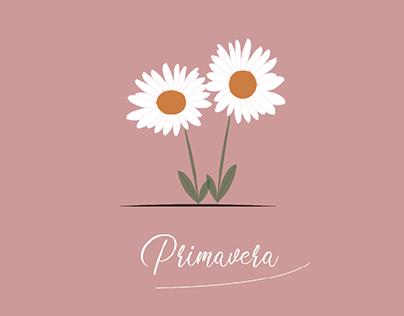 création d'illustrations minimalistes