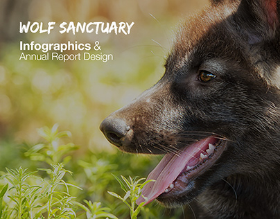 Infographics Design for a Wolf Sanctuary