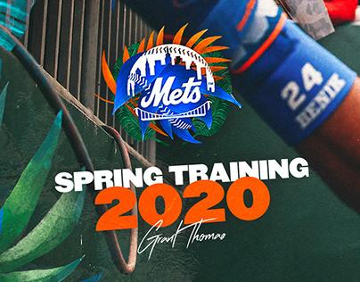 Mets Spring Training 2020