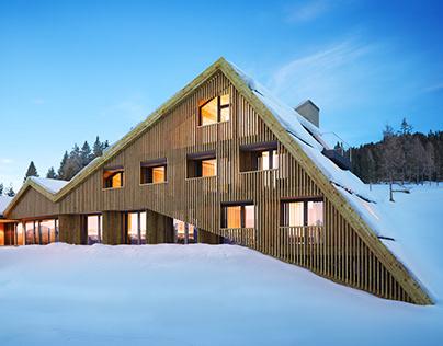 Modern Alpine Hotel