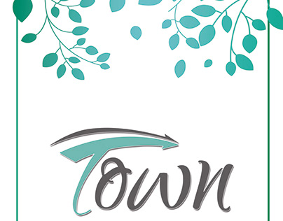town Project
