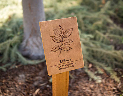 Botanical Identification Signage at Facebook HQ