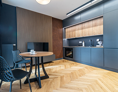 Modern Apartment (for rent)