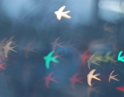FLIGHT stop motion animation