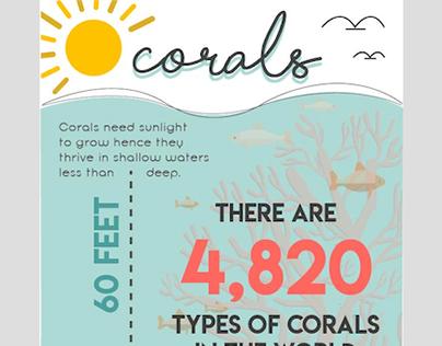 Corals infograph