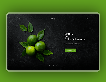 Website design concept for organic limes store
