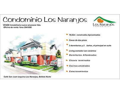 Folletos y carteles para inmobiliaria