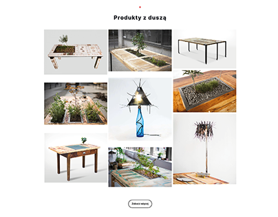 ECOBAUHAUS // Identity // Web Design