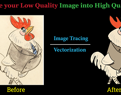 Image Trace/ Vector Trace