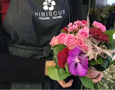 Hibiscus - Motion Design sur le thème de Noël - 2018