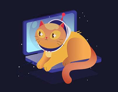 cats like laptops