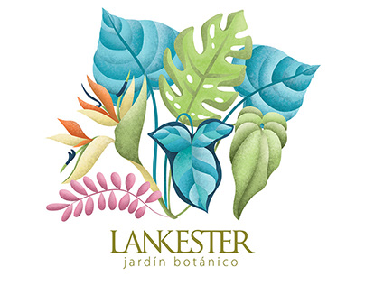 Ilustración Botánica Jardín Lankester