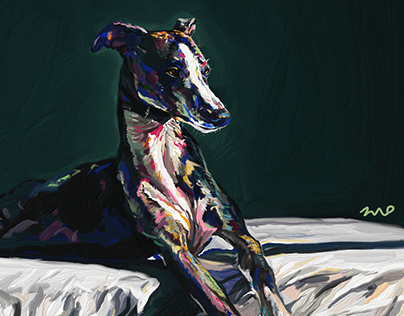 Hound / Digital painting / Ipad / Adobe Fresco