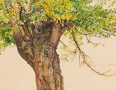 Watercolor. Vladimir Ukolov.