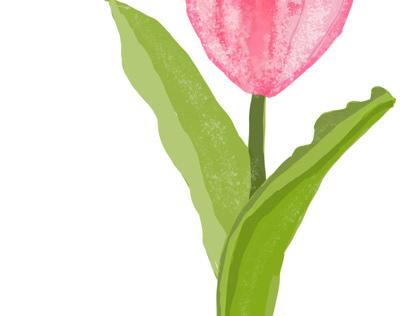 Vector flower from scratch