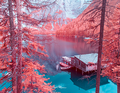 Infrared Dolomites I