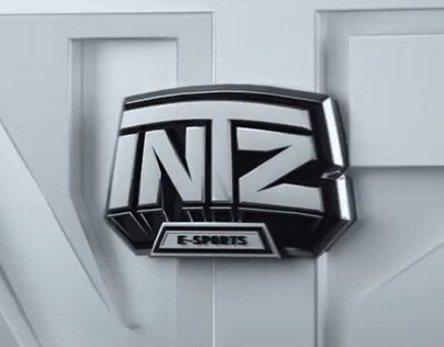 INTZ | 2020 Opening