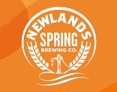 Newlands Spring x Endless Daze 2019