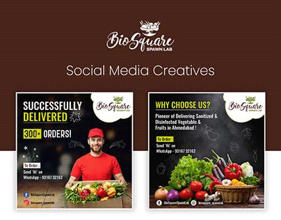 Social Media Creatives - BioSquare Spawn Lab