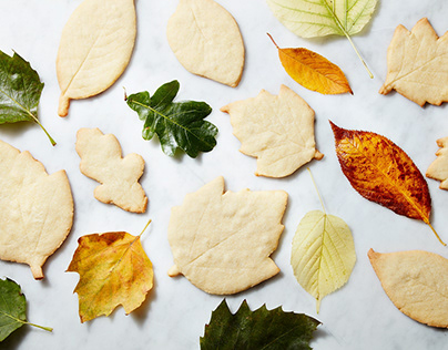 SAFARI - Embalagem de Biscoito